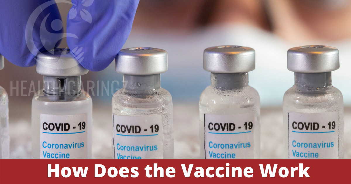 How Does the Vaccine Work