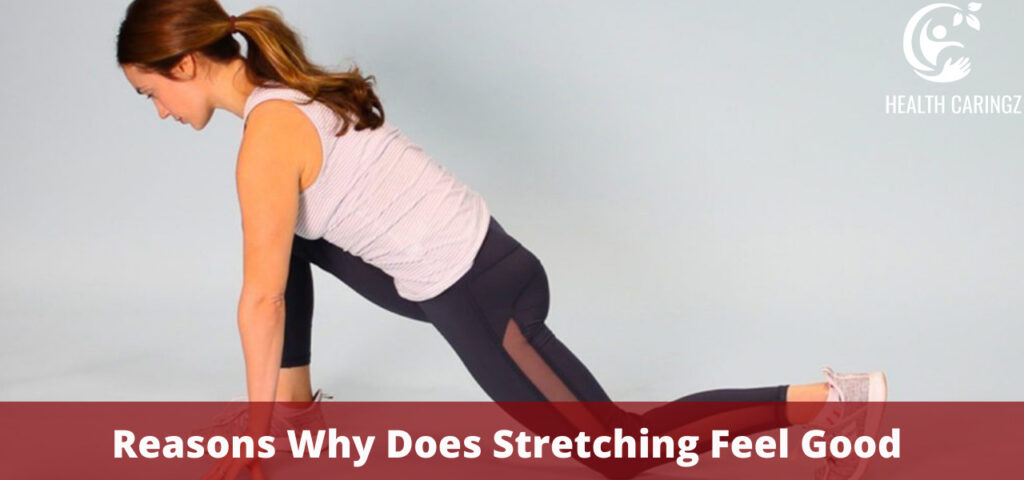 Reasons Why Does Stretching Feel